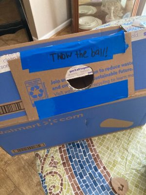"Instructions reading ""throw the ball"" have been added to this game made from a cardboard box with a piece of blue tape."